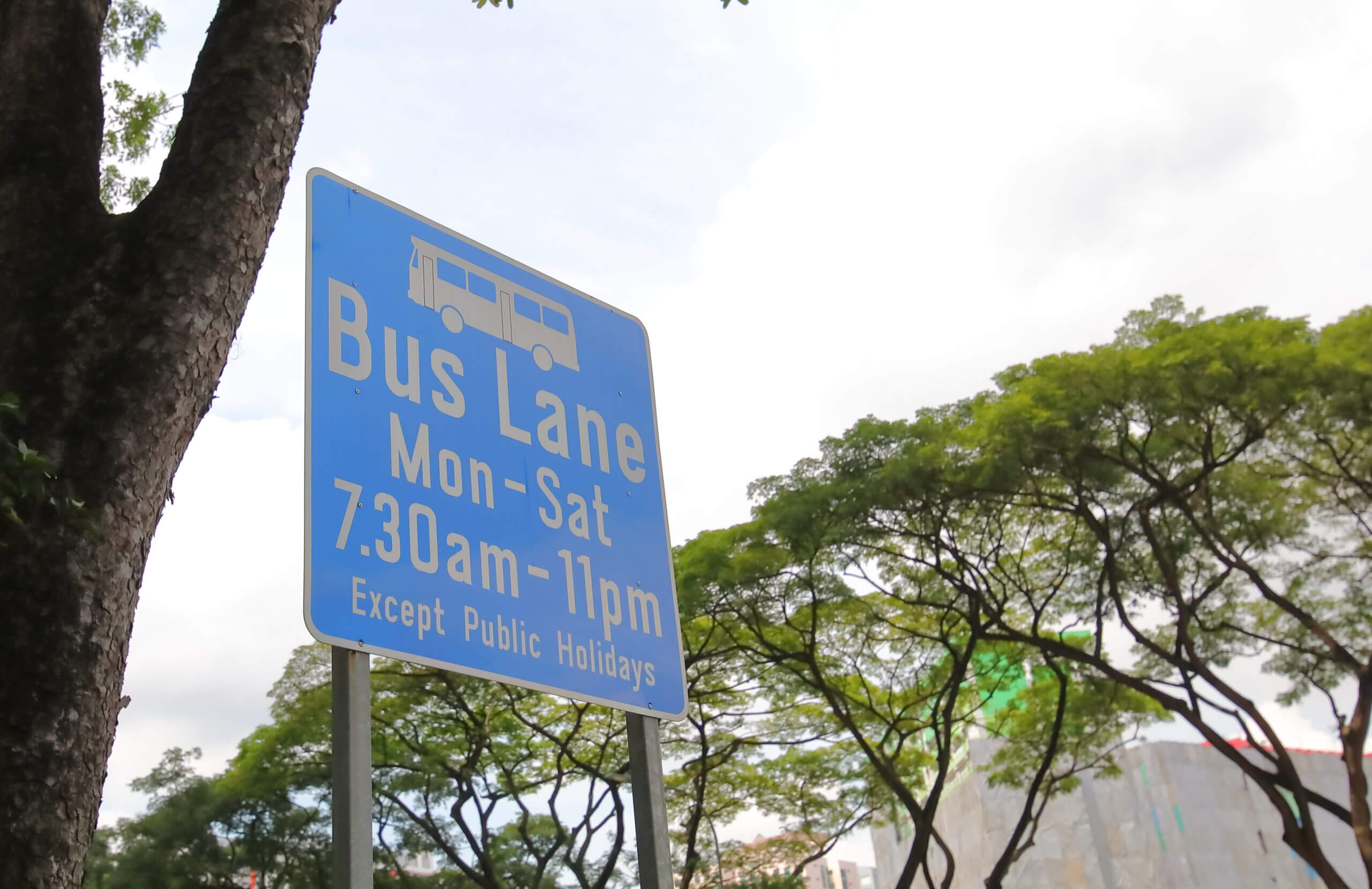 BUS LANE TIMINGS: The definitive guide