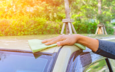 SQUEAKY CLEAN: 3 eco-friendly car cleaning products